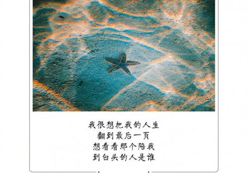 个性简单文字图片_追寻我人生的价值