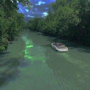 客桥.养眼绿色系背景图/我想和你 一起闯进森林 潜入海底.