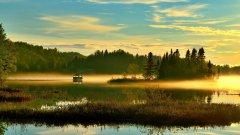 优美的湿地沼泽图片 湿地沼泽风景图片
