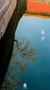 春分之故宫博物院池中的繁花倒影图片
