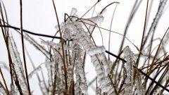 寒冷的冰雪霜冻图片