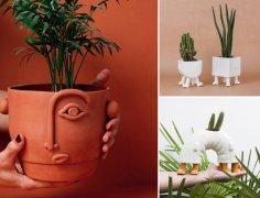 西班牙加利西亚创意陶土花盆图片