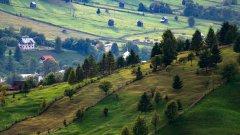 郊外绿色风景图片