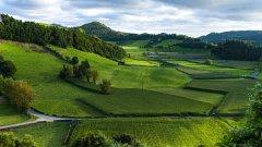 绿色田园图片大全