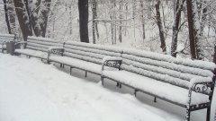公园里的长椅图片